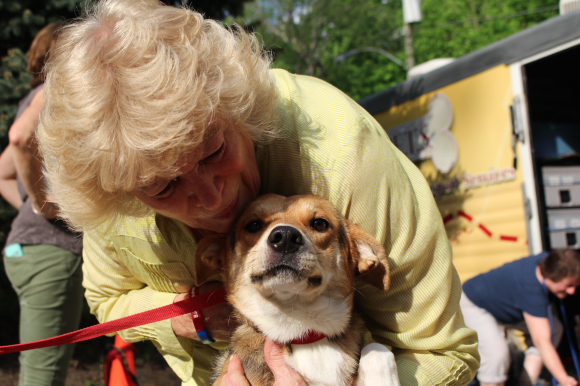 Northwind Kennels and ARK Charities Help Rescue 24 Sweet Southern Dogs