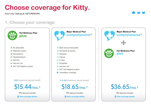 kitty-insurance-580x407